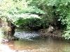 summer_streams_34
