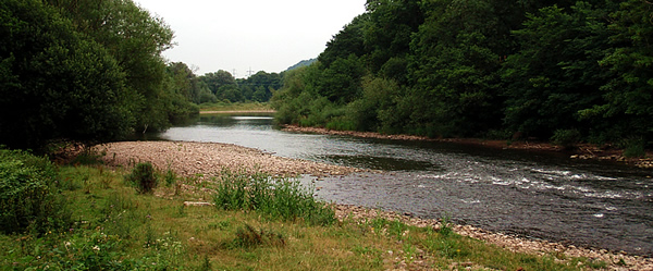 Early Morning Visits to the River Usk - 8