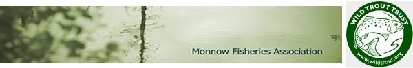 Monnow Fisheries Association in conjunction with The Wild Trout Trust