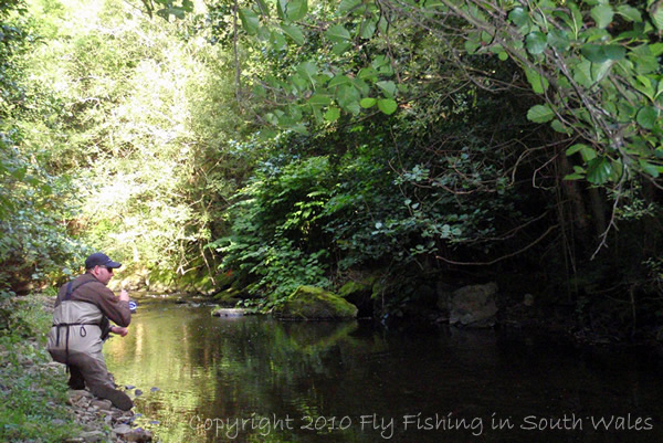 The Exploration of Stream: B - ...a bent rod: the result of a careful approach...