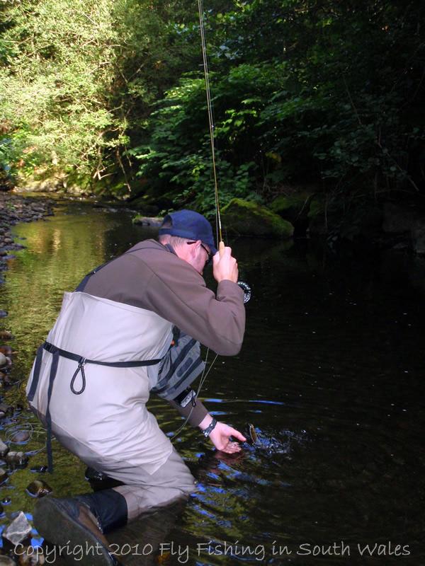 The Exploration of Stream: B - ...the gentle landing....