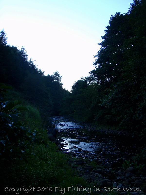 The Exploration of Stream: B -  ...and a last cast as darkness settles in