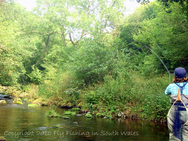 Fishing, Beer and the End of All Things Trout: A Sweet Cast From Mrs C