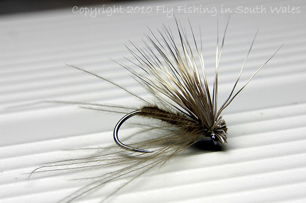 The River Taff Collection - CDC & Elk