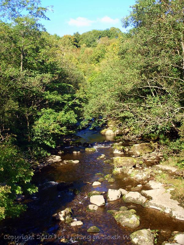 100926 - The Upper Stream