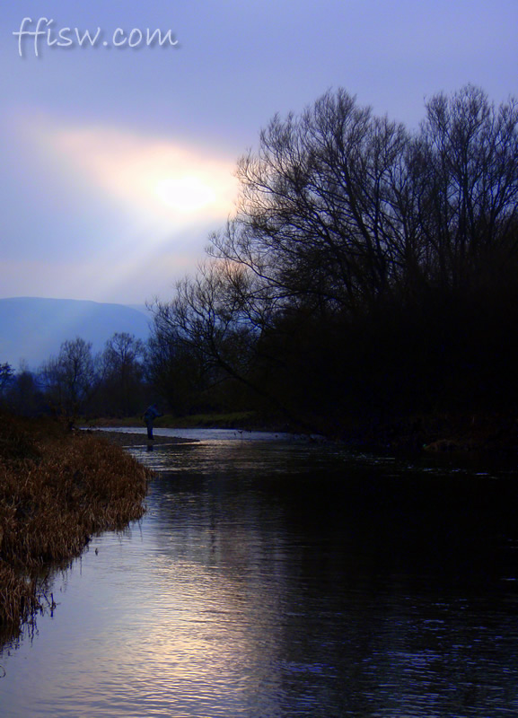 As the daylight fades the grayling still elude us...