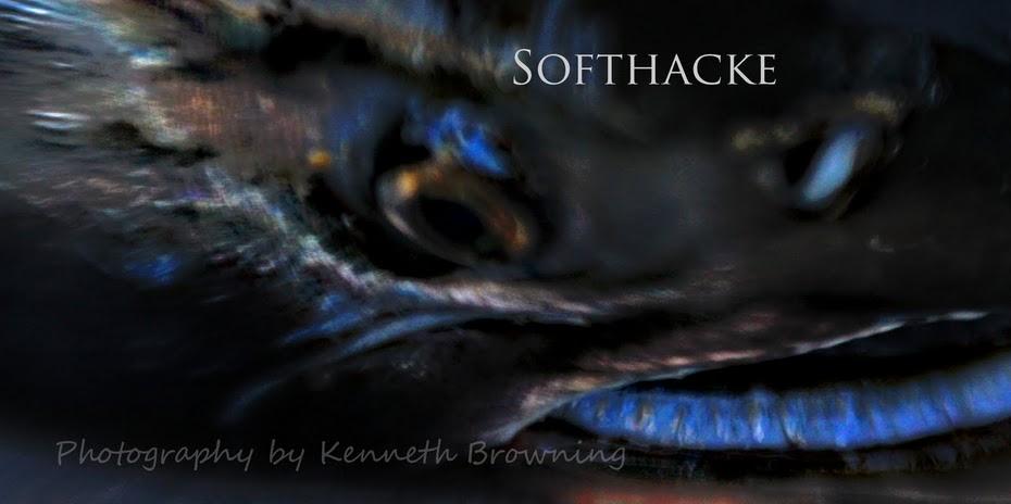 Softhacke at softhacke.blogspot.com