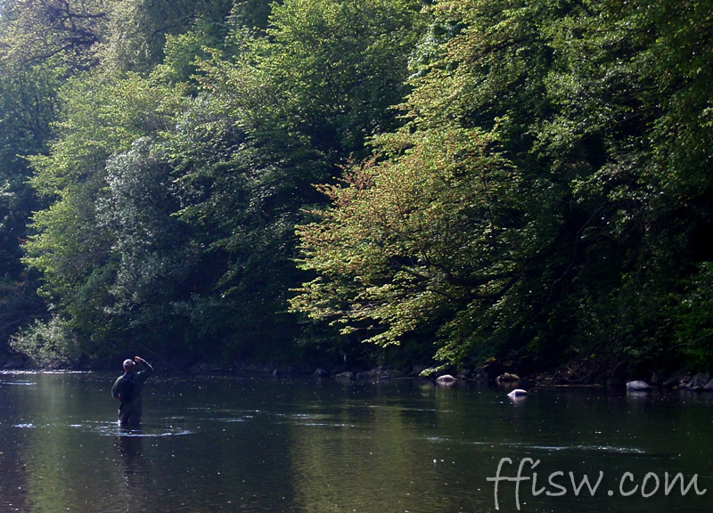 Early results for Rob with a reaction to a dry fly