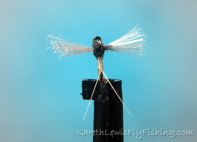 Caenis Spent Spinner (#32) tied on the legendary small fly hook, the TMC 518...