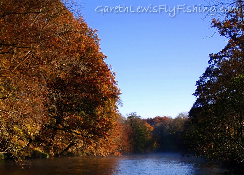 The River Irfon; Autumnal Beauty