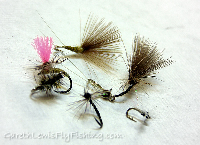 A quick on-site order - Micro Selection (coming to the fly shop soon!)